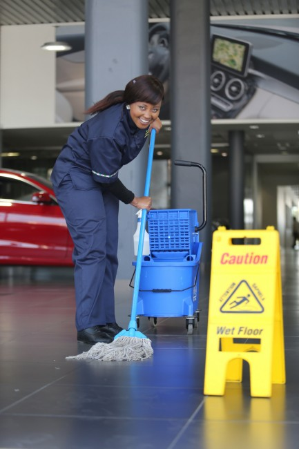 Cleaning Africa Professional Cleaning Services